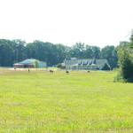 view over farm